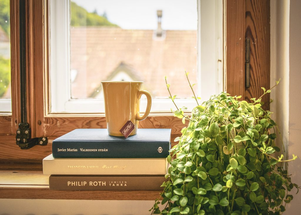 Three books stacked in front of a window, with a cup of tea resting on top of them, and a houseplant to their right